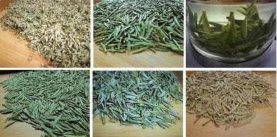 17緑茶黄茶
