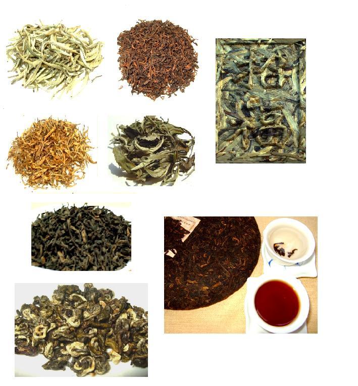 雲南のお茶